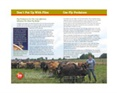 Fly Control Guide For Dairy
